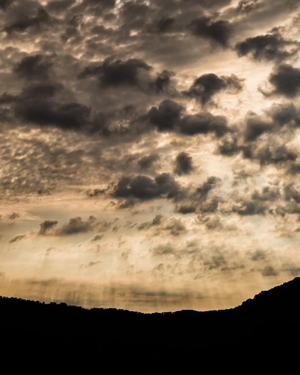 Clouds Fog Bunny-4